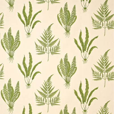 Sanderson Tyg Woodland Ferns Green