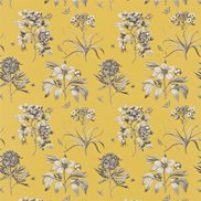 Sanderson Tyg Etchings & Roses Empire Yellow