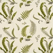 GP & J Baker Tyg Ferns Lime/Grey
