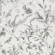 Ralph Lauren Tapet Fern Toile Etched Black